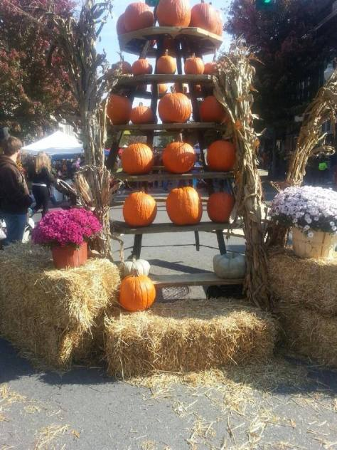 a pumpkin tree